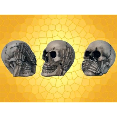 Lot des Trois Crânes de La Sagesse Rien Dit Vu Entendu Secret du Bonheur
