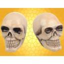 Salière et Poivrière Crâne Squelette Sel Poivre Lot 2 Crânes Gothiques pour Cuisine Fantasy :    Salière et Poivrière Crâne Squelette Sel Poivre Lot 2 Crânes Gothiques pour Cuisine FantasyDOD143.    Un des crânes...