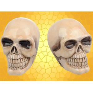Salière et Poivrière Crâne Squelette Sel Poivre Lot 2 Crânes Gothiques pour Cuisine Fantasy