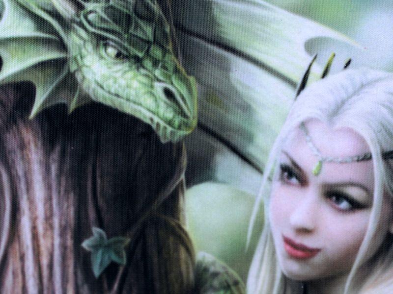 Carnet à Spirales Fantasy Fée Gothique Âmes Sœurs <b>Dragon Vert</b> Elfe - carnet-a-spirales-fantasy-fee-gothique-ames-soeurs-dragon-vert-elfe