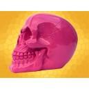 Crâne Rose Brillant Squelette Humain Décoration Gothique